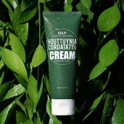 [DermaFactory] Houttuynia Cordata 71% Cream 60g